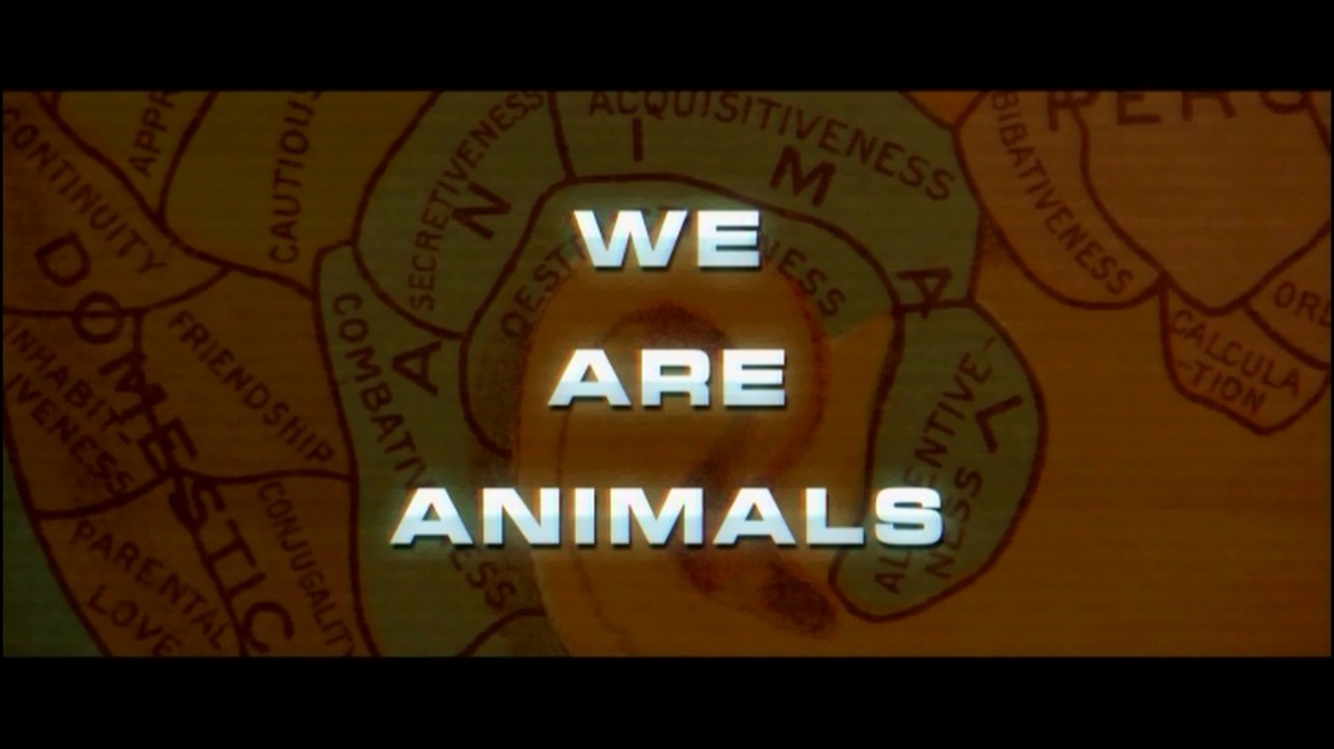 We Are Animals (BOF11)
